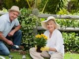 Livet som pensionär